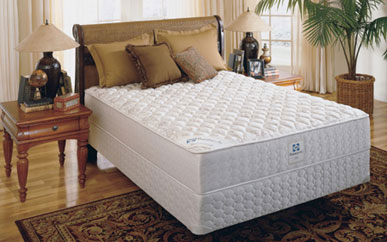 Beds Youth Bedroom Bunk Beds Mattress